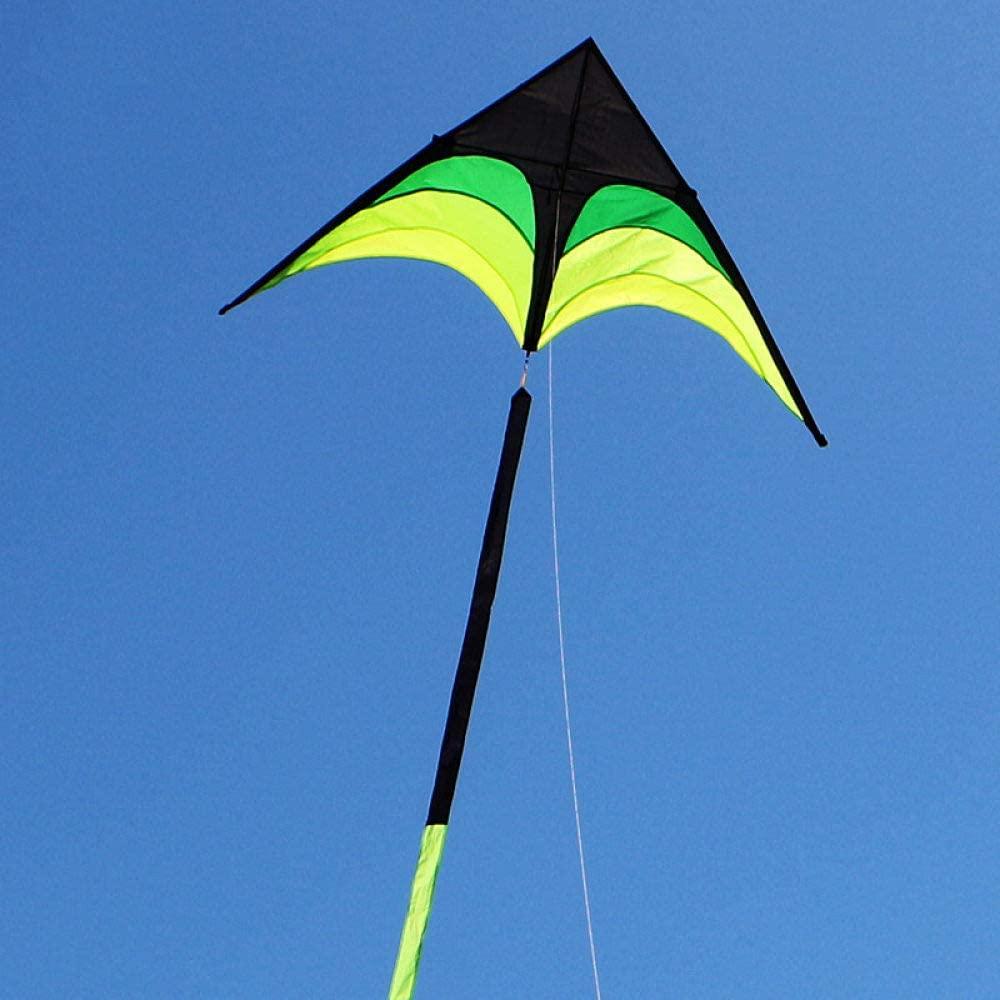 FQD&BNM Kite Large Delta Kite for Adults Kite Nylon Toys Fly Kites Children Kite Reel Kite Factory Eagle Bird