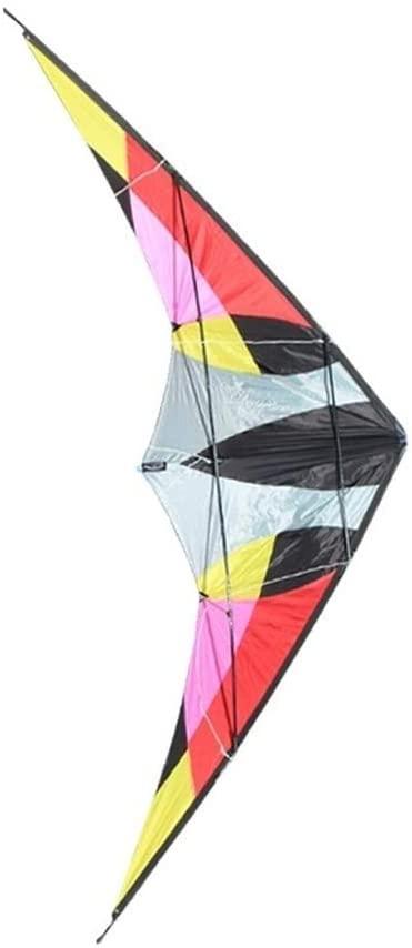 MJC Children Kite Kite, Kids Kite Fun Kites for Kids Easy to Fly with Outdoor Sports 2.2m Albatross Kite Breeze (Color : Color)