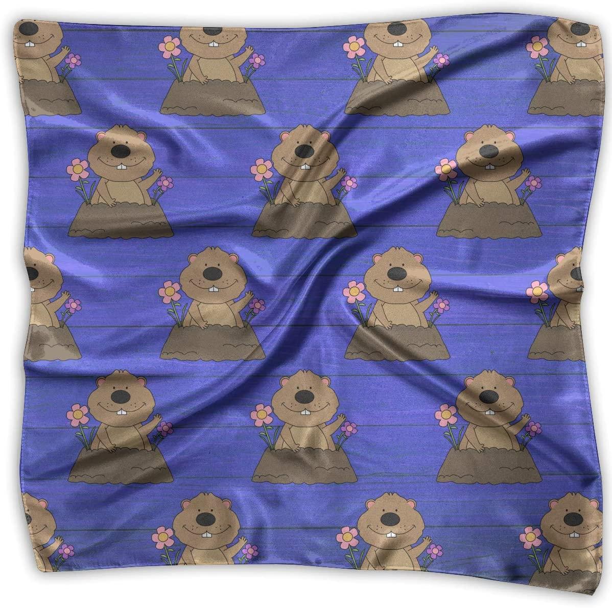 WFIRE Groundhog Day Square Handkerchiefs Scarf Shawl Bandanas Headscarf Neckerchief Tie Hair Scarf