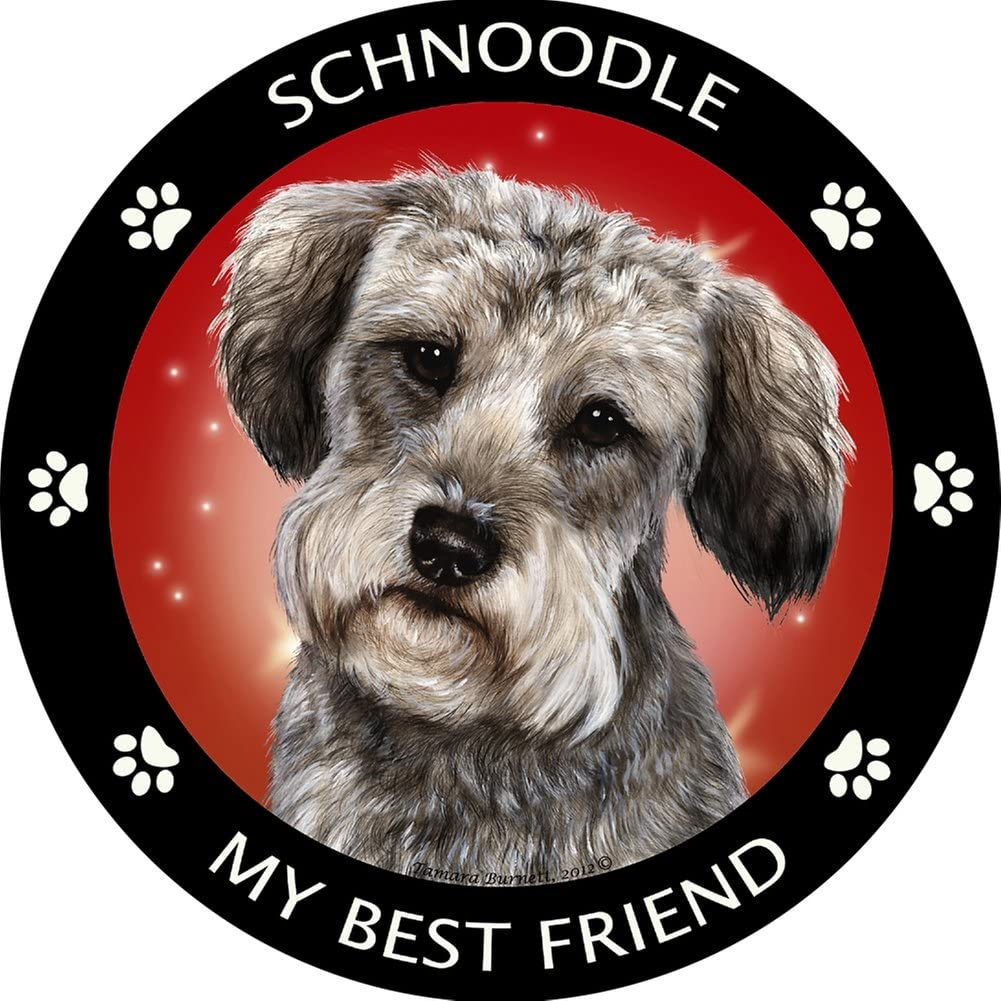 Pet Gifts USA Schnoodle My Best Friend Magnet