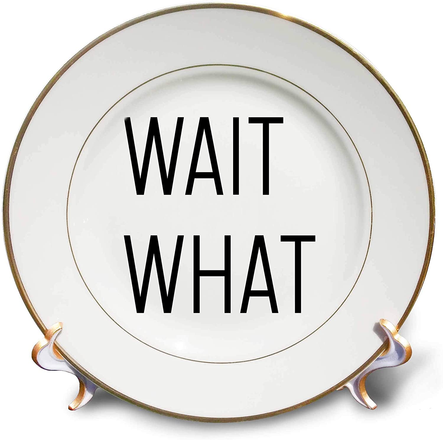 3dRose Tory Anne Collections Quotes - Wait What - 8 inch Porcelain Plate (cp_324406_1)