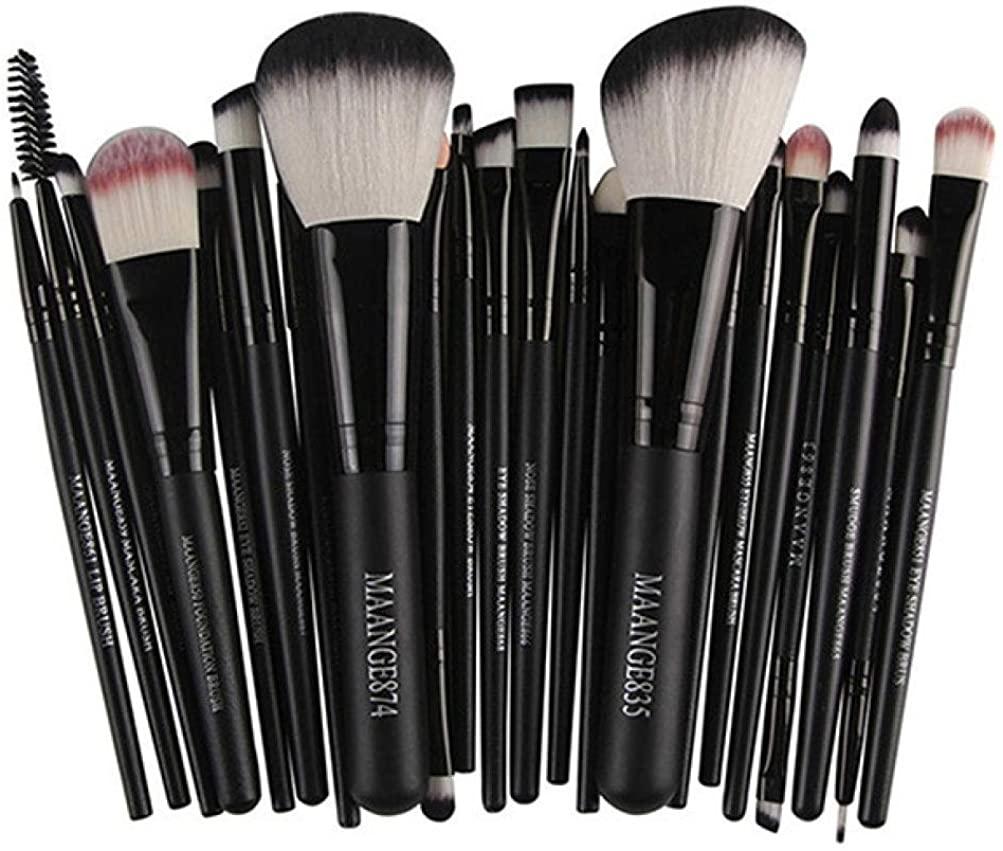 Han Shi Brushes, Fashion 22pcs Cosmetic Makeup Brush Set Lip Blusher Eye Shadow Brushes Kit