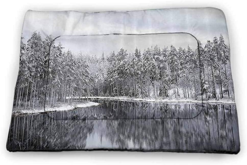 carmaxs Cat Mat Snowy Nature Easy-to-Clean Northern Norway Mountains and Atlantic Coastline Fishing Harbor Picture Print White and Indigo