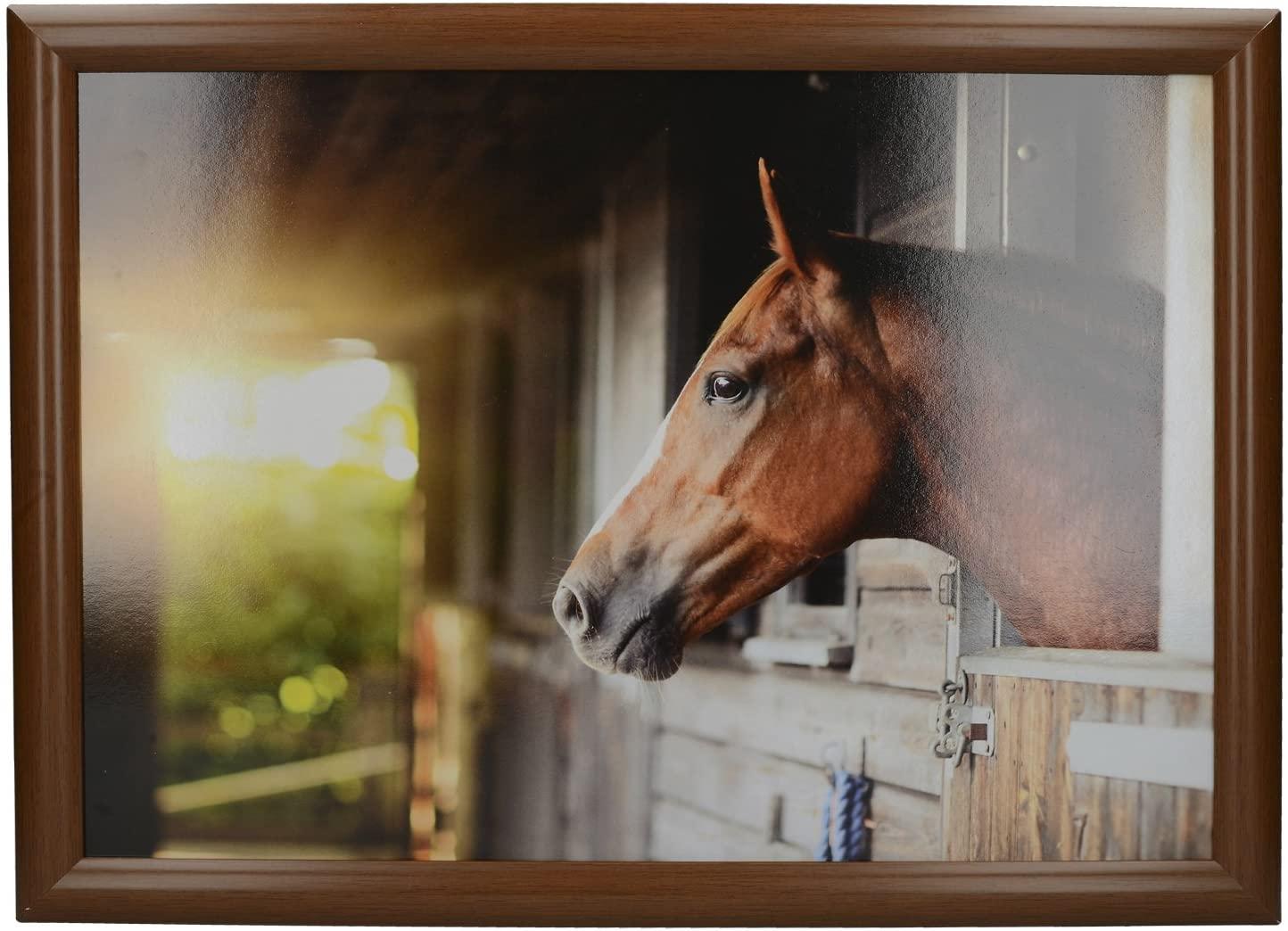 CreativeTops 'Stable Horse' Cushioned Bean Bag Lap Tray, 44 x 34 cm (17.5