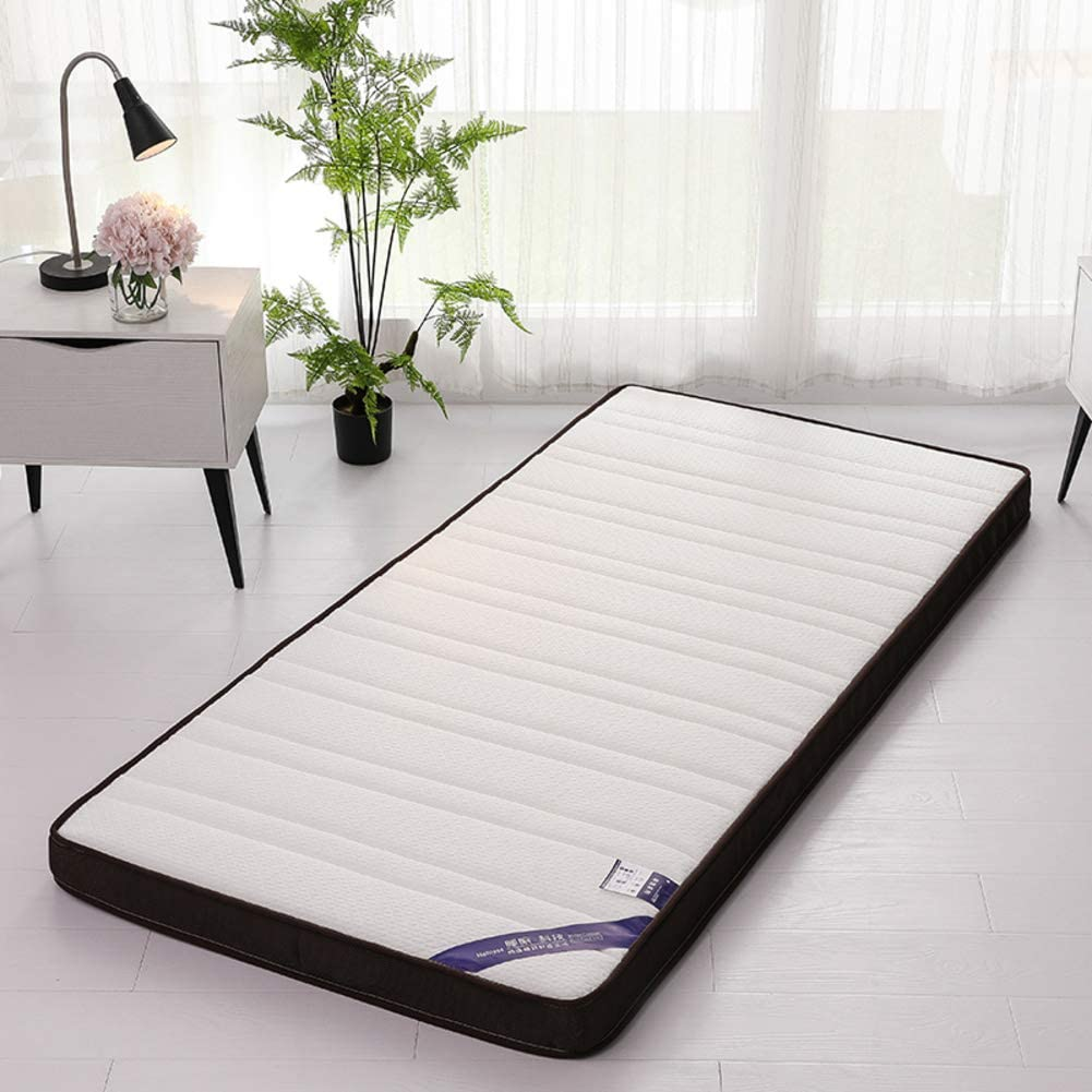 AMYDREAMSTORE Sleeping Mattress Tatami Floor Mat,Soft Japanese Futon Mattress Pad Folding Breathable Student Dormitory Mattress-d 100x200cm(39x79inch)