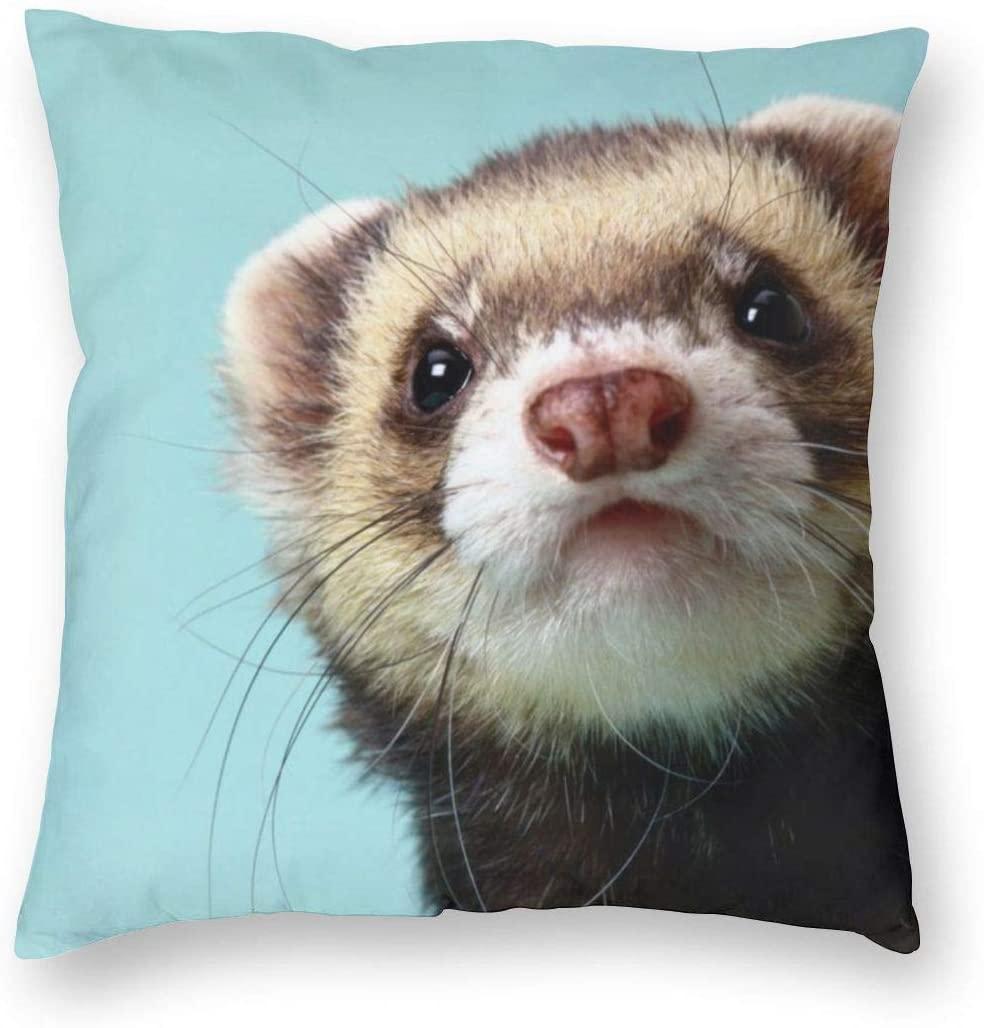 antcreptson Alphabetical Ferret Throw Pillow Decorative Pillow Case Home Decor Square 18x18 Inches Pillowcase