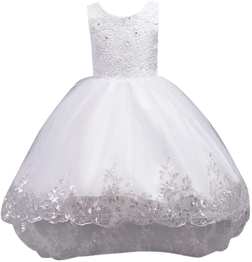 VEFSU Kid Child Girl Sleeveless Floral Embroidered Bow Tulle Princess Dress