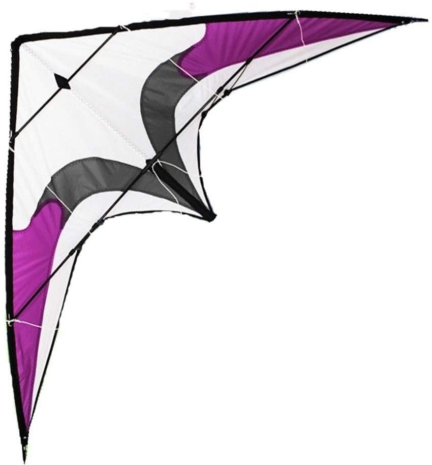 Large Kite, Kids Kite Beautiful Kites for Kids Easy to Fly for Beach Outdoor Stunt Kite Suitable for Beach or Park (Color : Purple)
