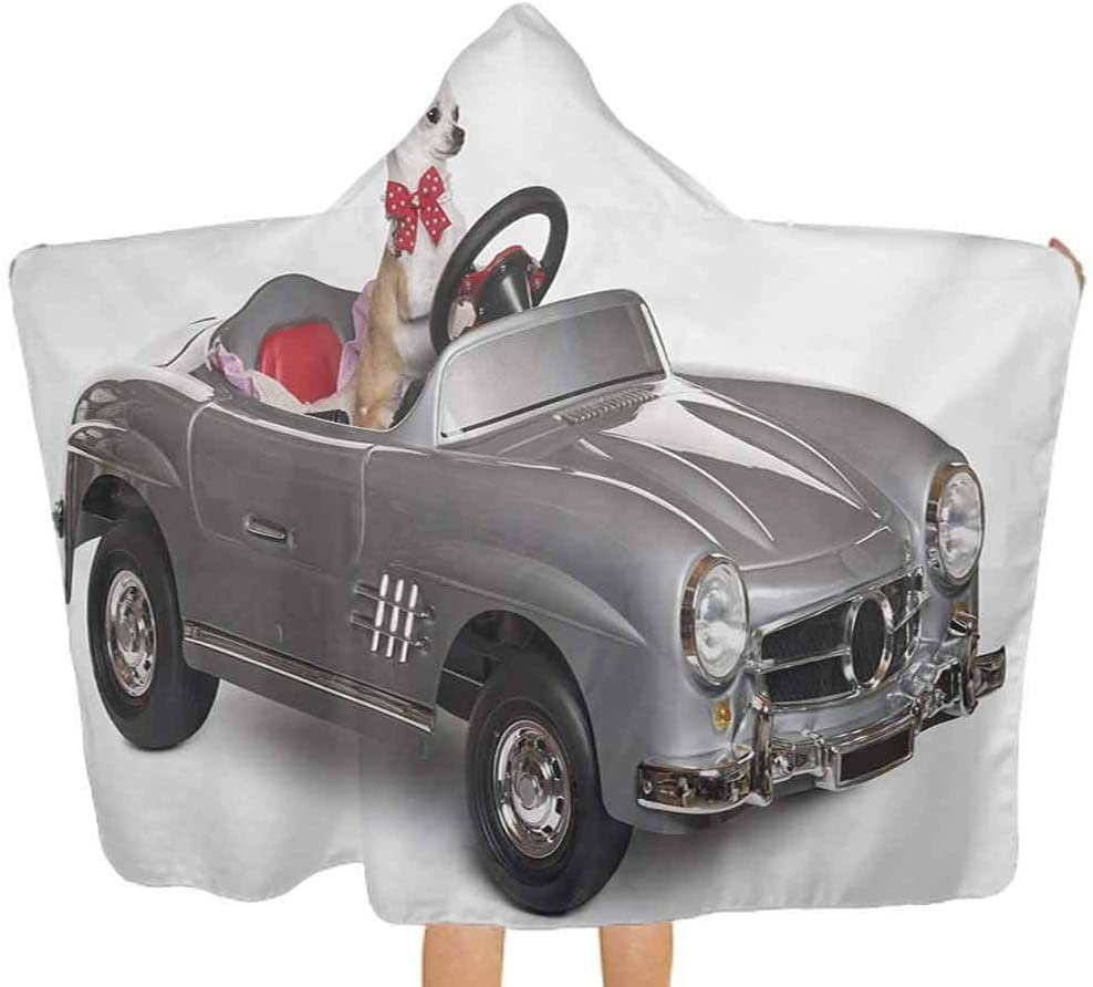 ThinkingPower Hooded Baby Towel Chihuahua Puppy in The Car with Bow Tie Fashion Auto Fancy First Studio Shot Toddler Hooded Beach Bath Towel Sized for Infant and Toddler Multicolor 51.5x31.8 Inch