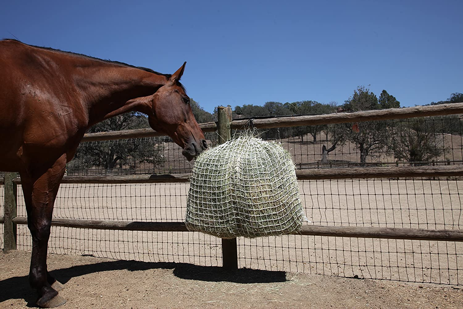 Freedom Feeder Mesh Net Full Day Slow Horse Feeder — Designed to Hold 30 lbs/4 Flakes of Hay and Feed Horse All Day — Reduces Horse Feeding Anxiety and Behavioral Issues
