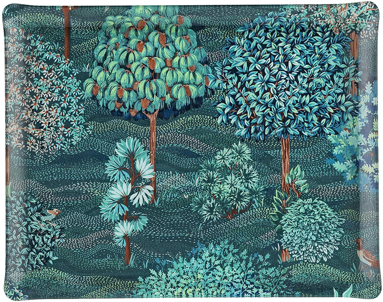 PLATEX 4046361199 Acrylic Tray, Blue, 46X36