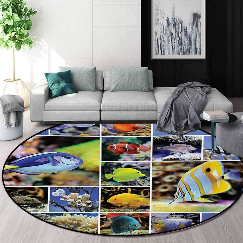 RUGSMAT Ocean Round Area Rug Reversible Floor Carpet,Collage of Underwater Photos with Collection of Tropical Fish Oceanic Art Print Super Soft Living Room Bedroom Home Shaggy Carpet,Diameter-63 Inch