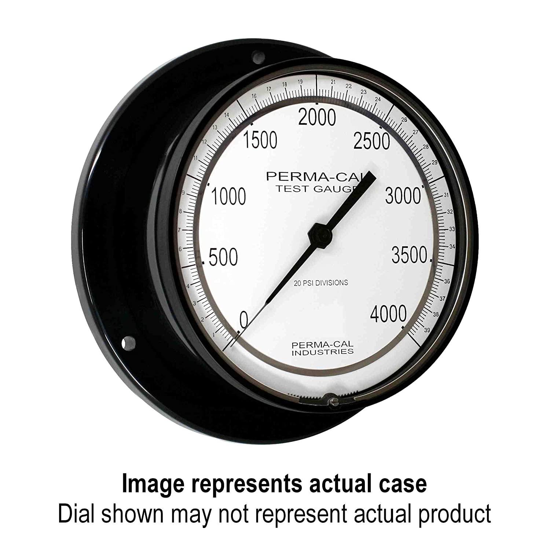 Pressure Gauge, Gearless, Test, 0-5000 psi, 6