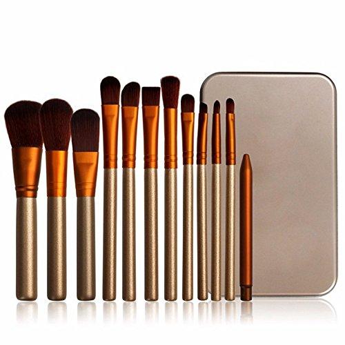 12 Pieces Makeup Brush Set,Beauty Brush set,12 Pieces Professional aluminum Handle Foundation Blending Blush Eye Face Liquid Powder Cream Cosmetics Brushes & 1 aluminum case