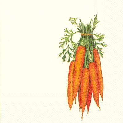 Boston International 40 Count 3-Ply Paper Cocktail Napkins, Carrots