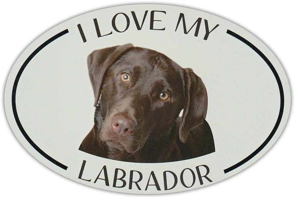 Crazy Sticker Guy Oval Dog Breed Picture Car Magnet - I Love My Labrador (Chocolate Lab)