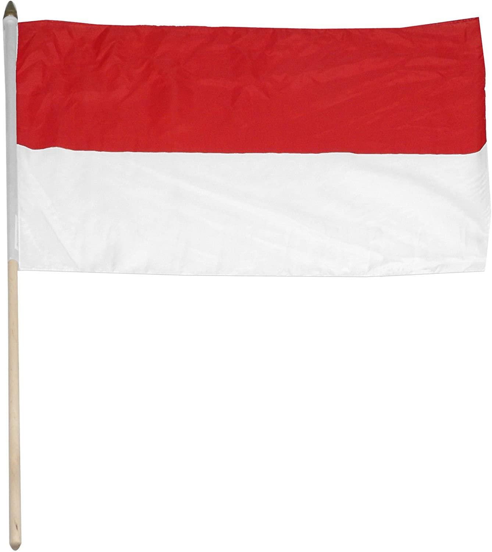 Indonesia Flag 12 X 18 Inch