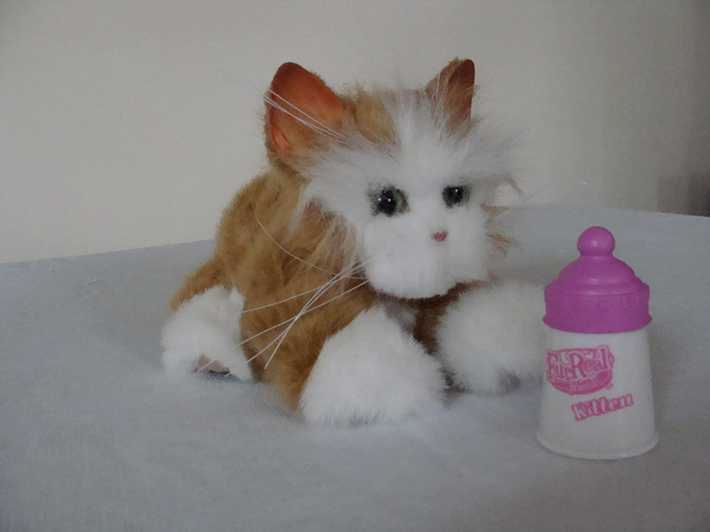 FurReal Friends Kitten (Marmalade)