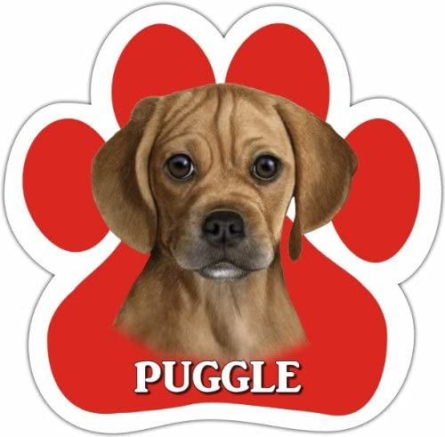 Puggle Car Magnet With Unique Paw Shaped Design Measures 5.2 by 5.2 Inches Covered In UV Gloss For Weather Protection