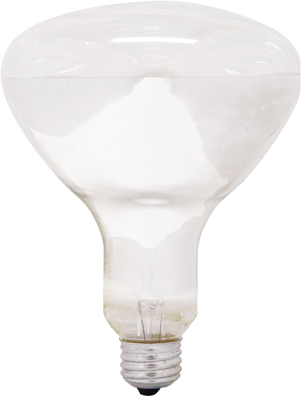 GE Lighting 21229 Soft White 300-watt R40 Light Bulb with Medium Base, 1-Pack