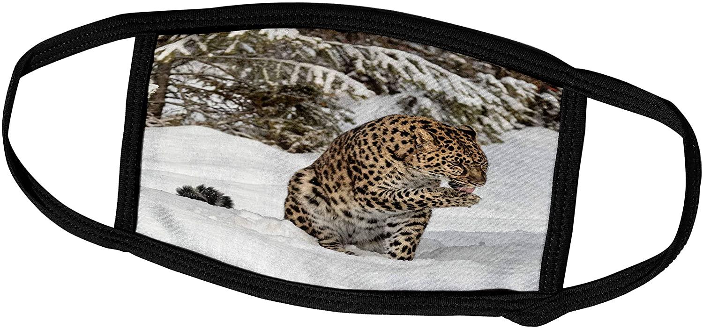 3dRose Danita Delimont - Big Cats - Amur Leopard Grooming Itself in Winter. - Face Masks (fm_278006_3)