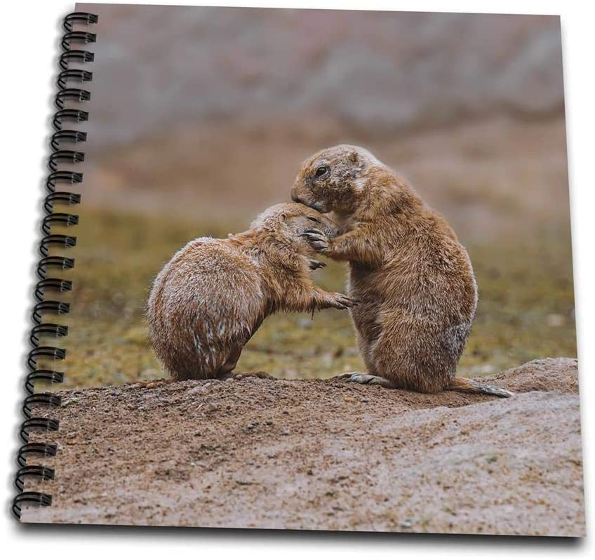 3dRose Cute Little Prairie Dogs Caring Each Other Notepad (db_264759_3)