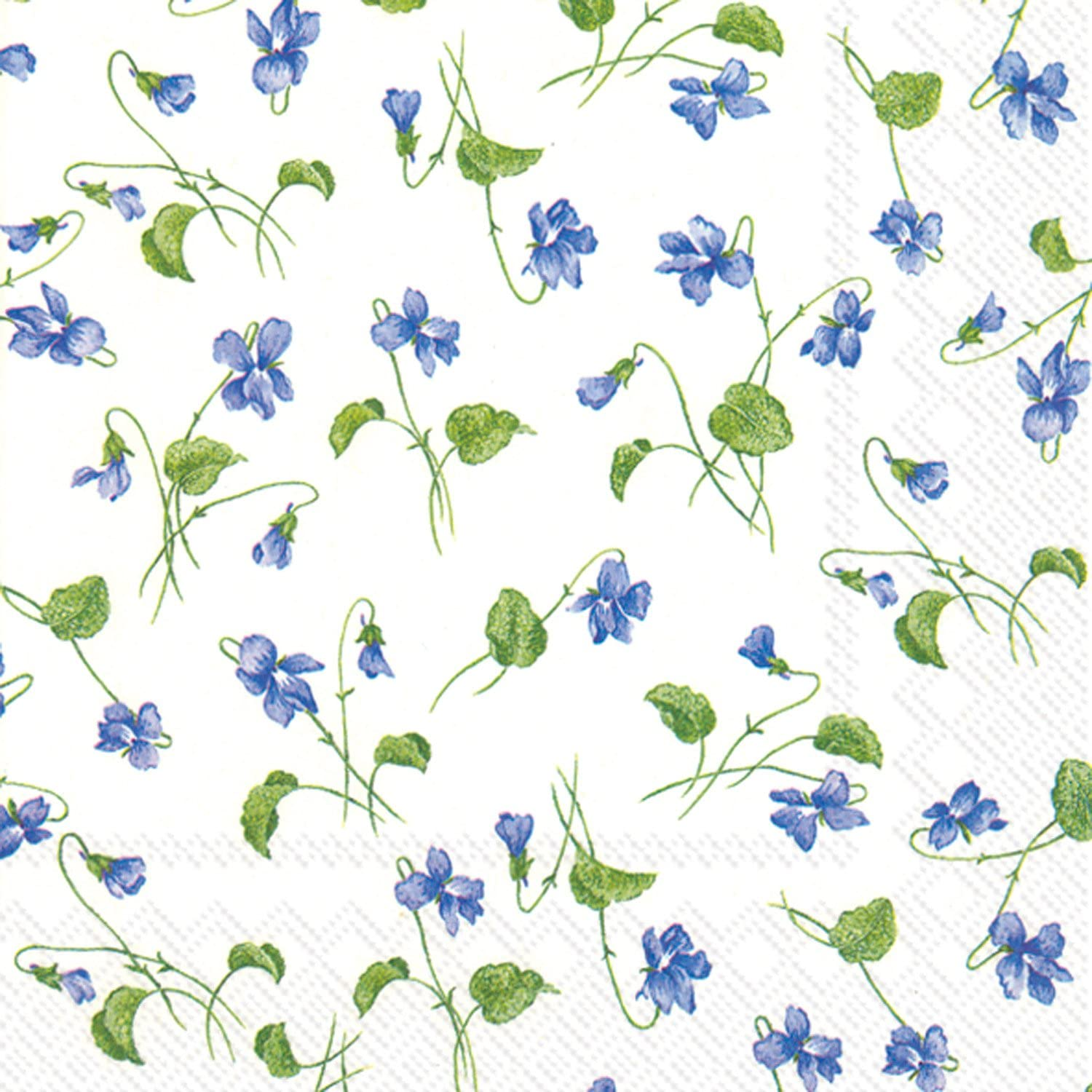 Celebrate the Home Floral 3-Ply Paper Luncheon Napkins, Viola Riviniana, 20 Count