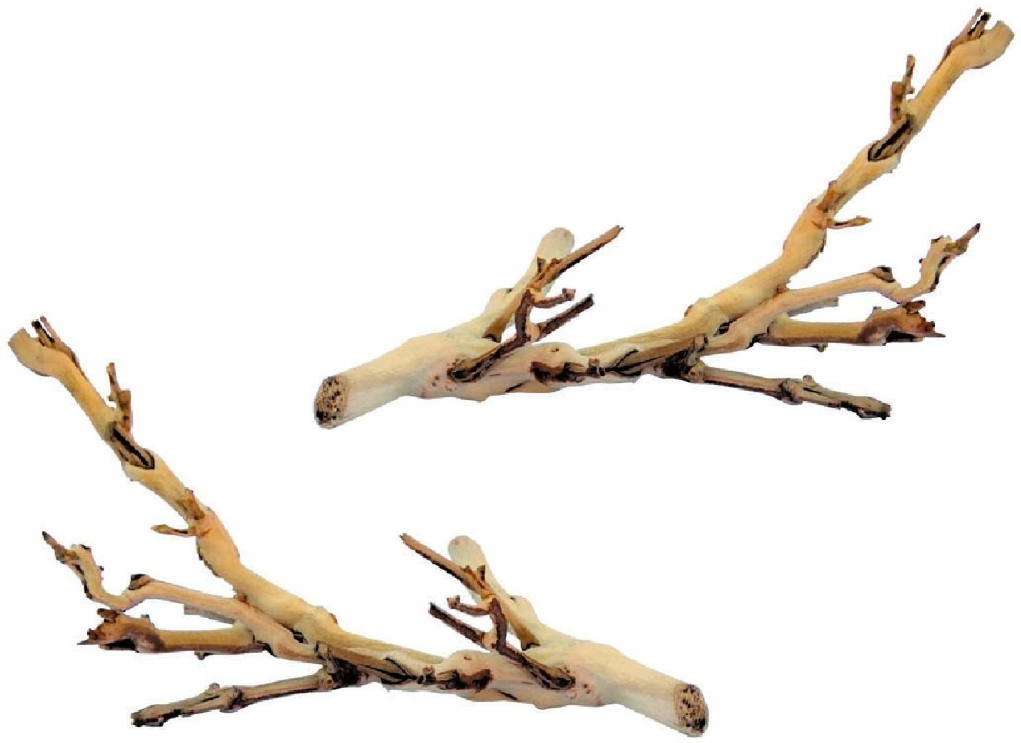 (2 Pack) Exo Terra Forest Branch, Small
