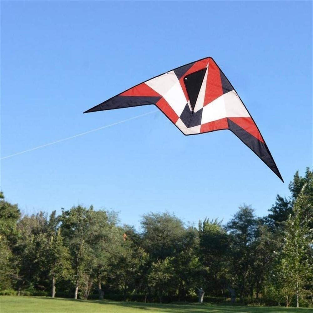 Large Kite, Kids Kite Beautiful Kites for Kids Easy to Fly for Beach Outdoor with Control Bar and 30m Line Suitable for Beach or Park (Color : Color)