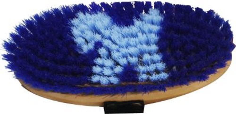 Showman Jr Kids Horse Pony BLUE Medium Pony Print Bristle Horse Body Brush Wood Top