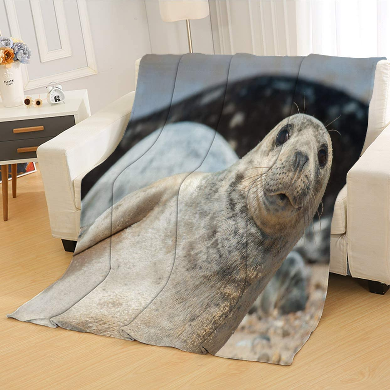 RLDSESS Soft Baby Blanket, All Season Blanket,Close Up of A Seal Pup,Soft Weighted Blanket,Baby Size: 31Wx47L inch