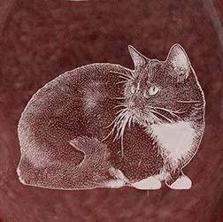 Tuxedo Cat Laser Etched Glassware Set (COOL, 4)