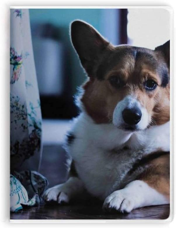Corgi Dog Pet Animal Lonely Picture Notebook Gum Cover Diary Soft Cover Journal