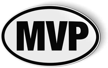 MVP - Flexible Magnet - Car Fridge Locker - 3.5