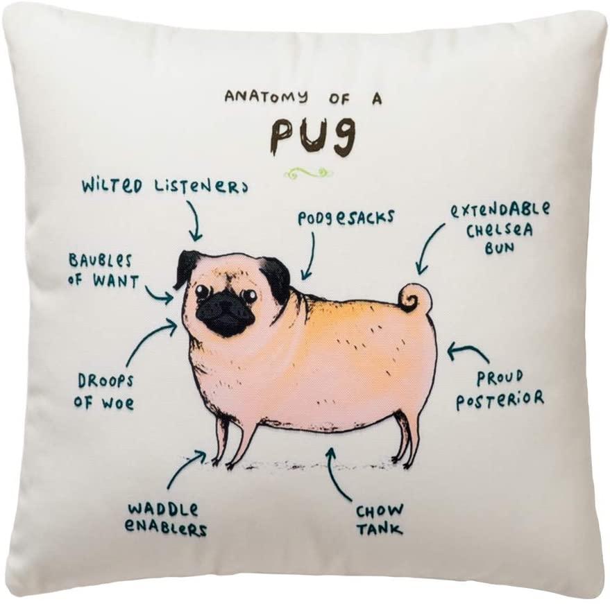 Pantaknot Pug Decorative Throw Pillow Cover Animal Cute Dog Pillowcase Cushion Home Decor, 18 x 18 Inch