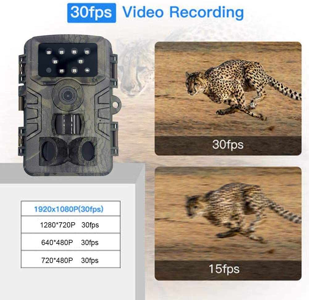 DaJun Outdoor Trail Camera, 20MP 1080P HD Game Camera Motion Activated Night Vision, IP66 Waterproof Scouting Wild Life Camera