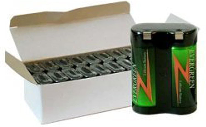 Evergreen 2CR5 245 6V Photo Lithium Batteries 2CR5/20
