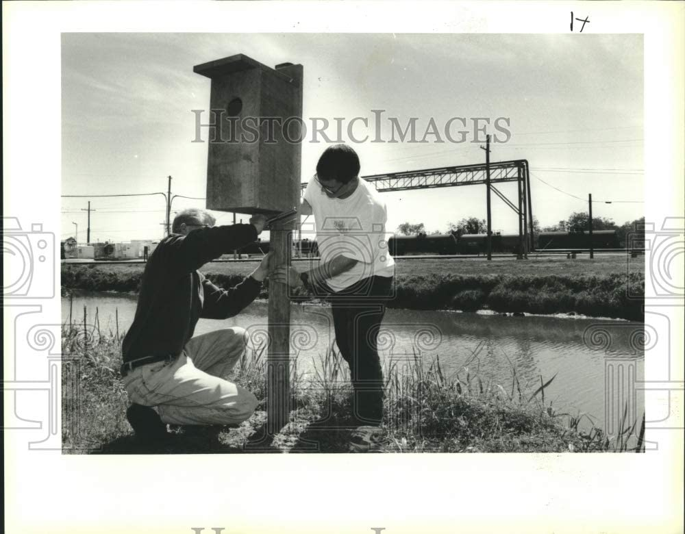 Historic Images 1994 Press Photo Hahnville High School Students Put up a Wood Duck Box