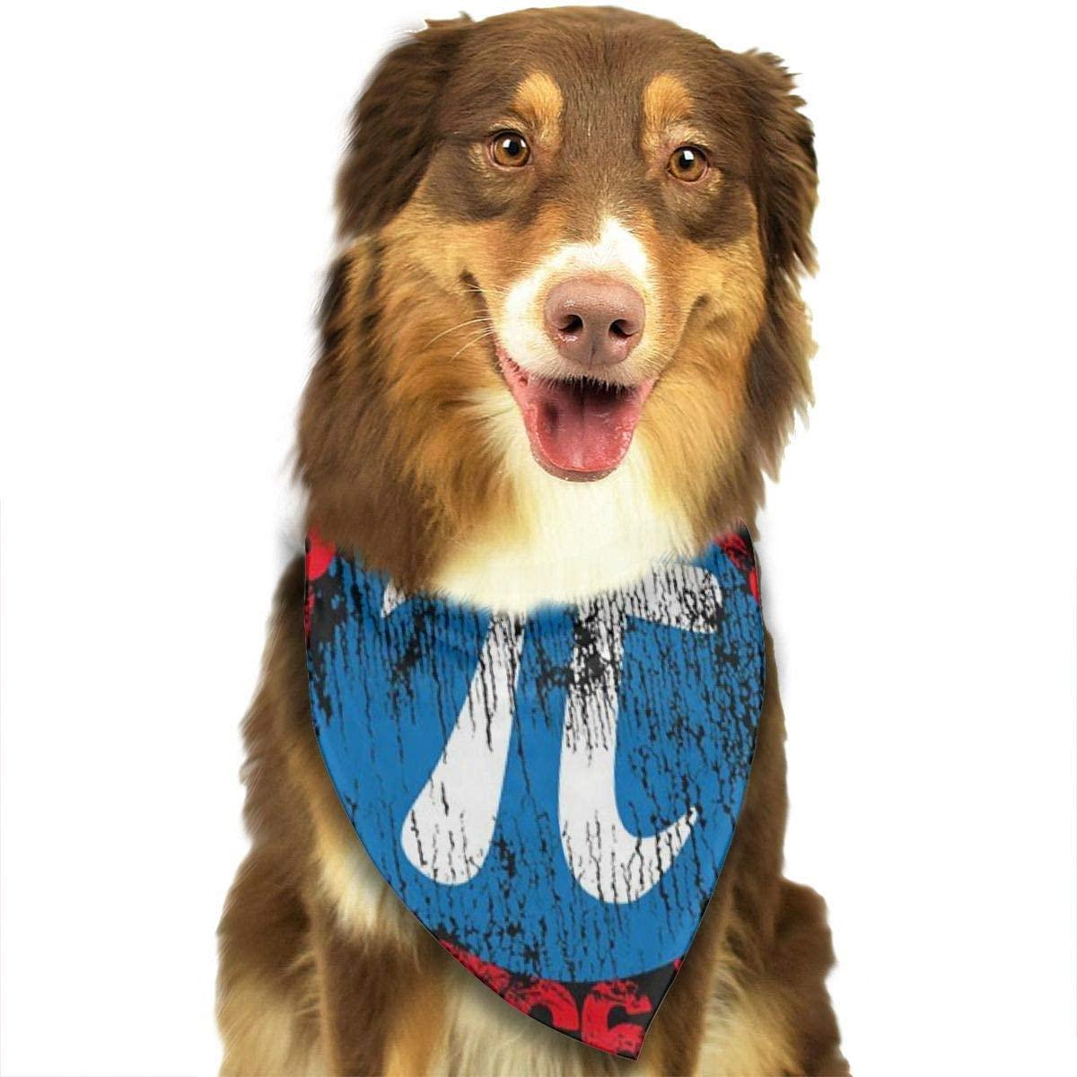 Ruin Pi Geek Math Nerd Triangle Neckerchief Puppy Triangle Triangle Bibs Scarfs for Pet Dogs