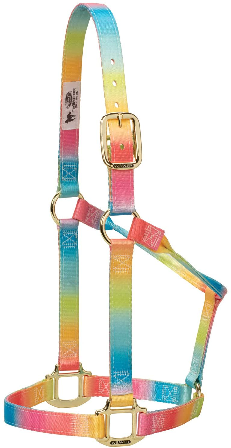 Weaver Leather Polyester Rainbow Non-Adjustable Halter