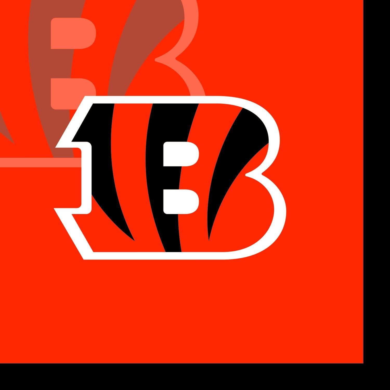 Creative Converting 16 Count Cincinnati Bengals Beverage Napkins