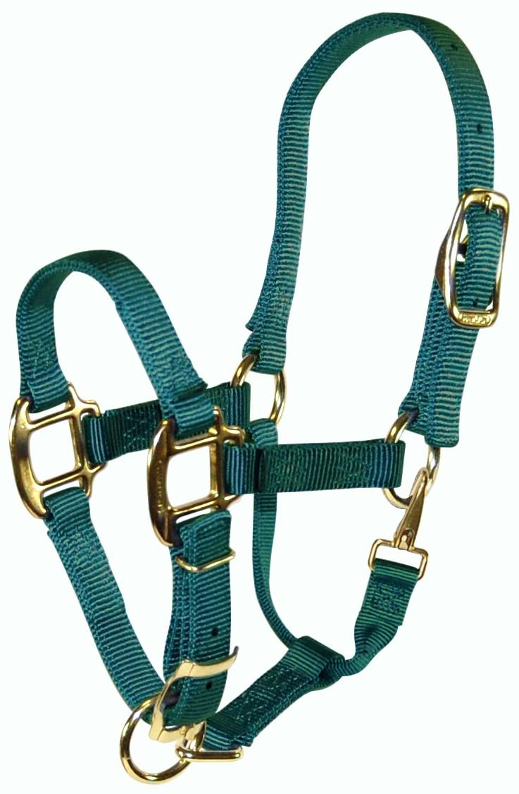 Hamilton Adjustable Quality 3/4-Inch Weanling Halter with Snap, 200 to 300-Pound Horse, Dark Green