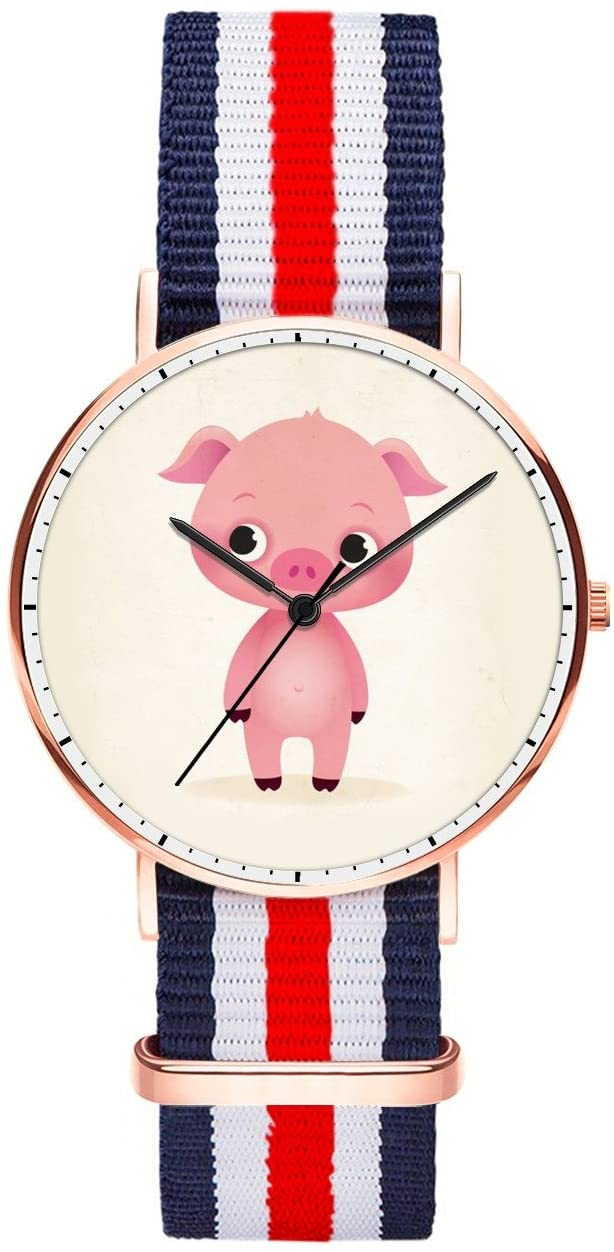 Frances Lee Women's Quartz Watches, Multicolor Dress Waterproof Watches, Funny & Fashionable Analog Soft Nylon Strap Watches for Young Lady - Pig