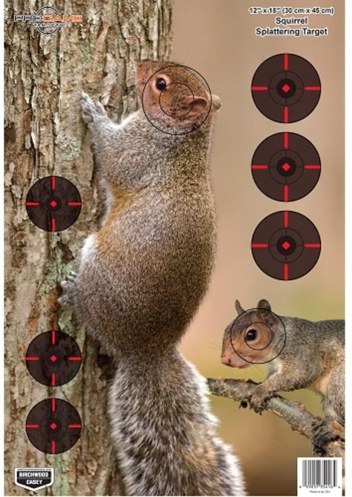 Birchwood Casey Pregame 12˝ x 18˝ Squirrel Target - 8 Targets, Black