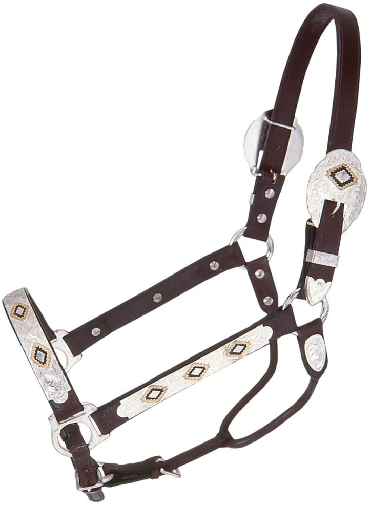 Royal King Gold and Black Inlay Show Halter