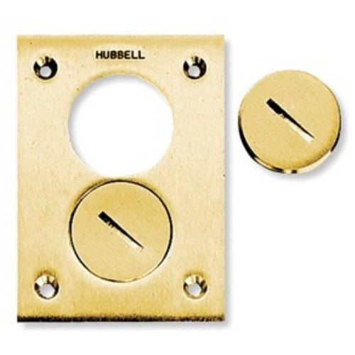 Hubbell Wiring Systems S3625 Brass Round Floor Box Rectangle Duplex Screw Cover, 4-5/32