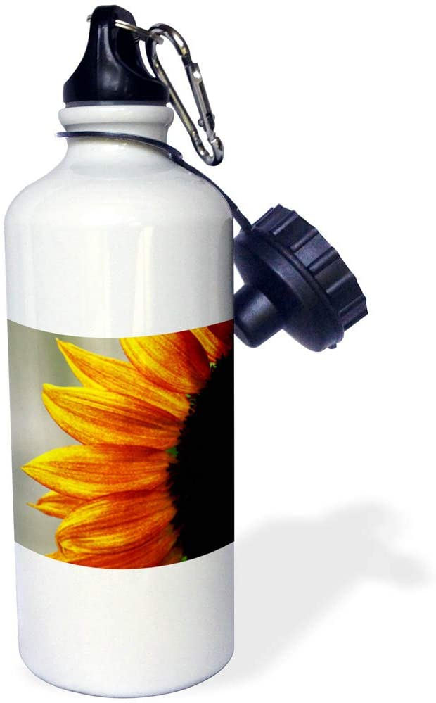 3dRose Stamp City - Flowers - Macro Photograph of The Left Side of a red and Yellow Sunflower. - 21 oz Sports Water Bottle (wb_320174_1)