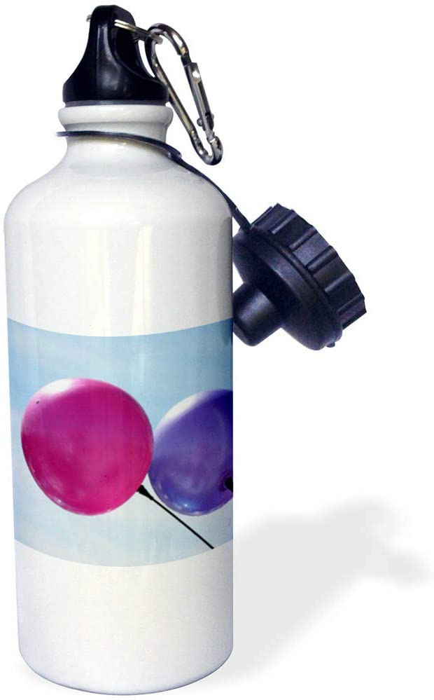 3dRose Jos Fauxtographee- Balloons - A Pink and Purple Balloon on a Pale Blue Sky - 21 oz Sports Water Bottle (wb_319609_1)