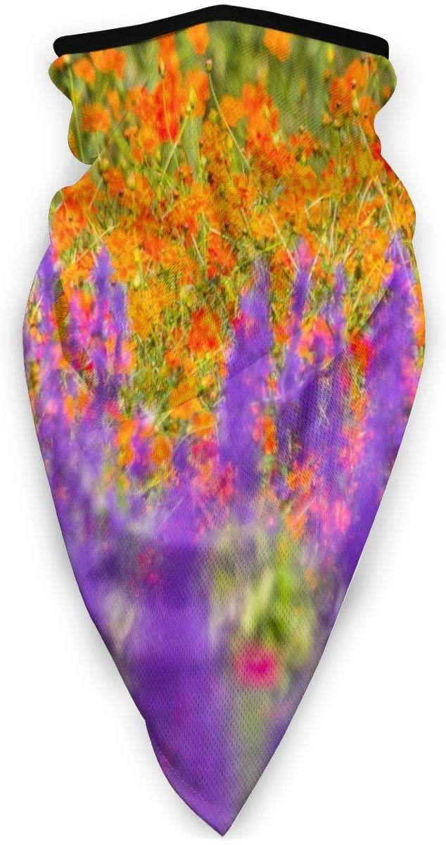 Love Animal Beautiful Plant Dandelion Sunny Blue Sky Half Face Mask Balaclava Women Men Ski Mask Bandana for Snowboarding