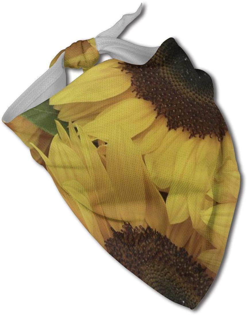 Ruin Sunflowers Triangle Neckerchief Puppy Triangle Triangle Bibs Scarfs for Pet Dogs